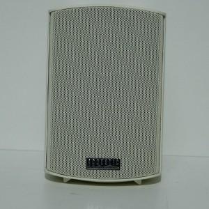 Acoustic VSP 302T